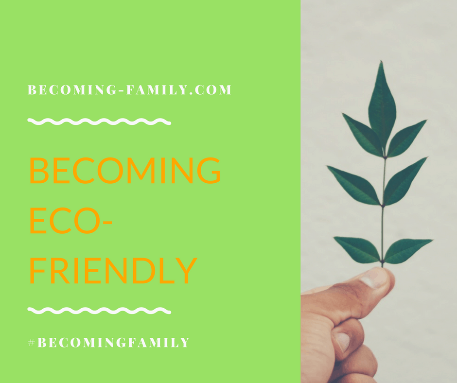 Becoming an Eco-Friendly Family