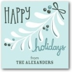 Holiday Cards from TinyPrints