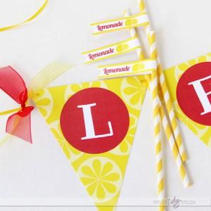 Lemonade-Stand-Banner (1)