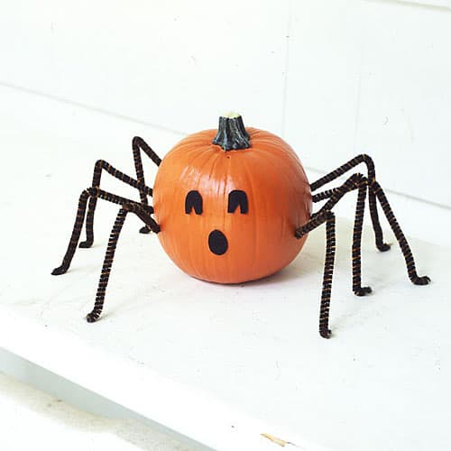 DIY No Carve Spider Pumpkin