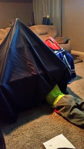 Discovery Kids Fort