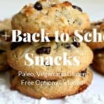 20+ Back to School Snacks (Including Gluten Free and Paleo options)