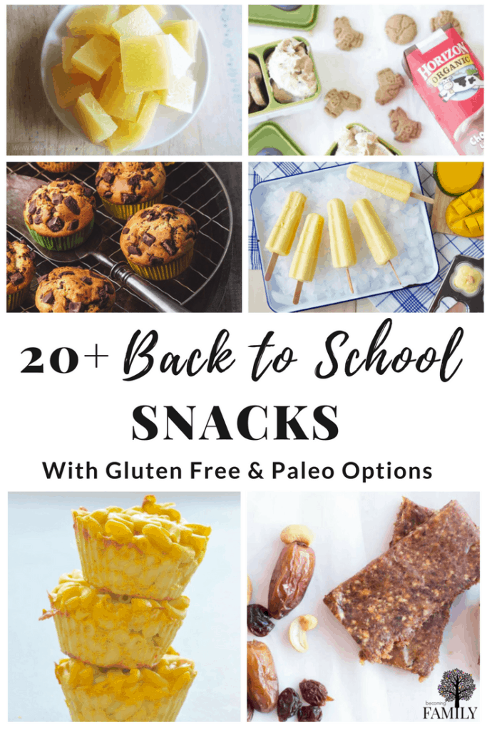 20+ After school snacks for kids including Gluten-fee and Paleo options.