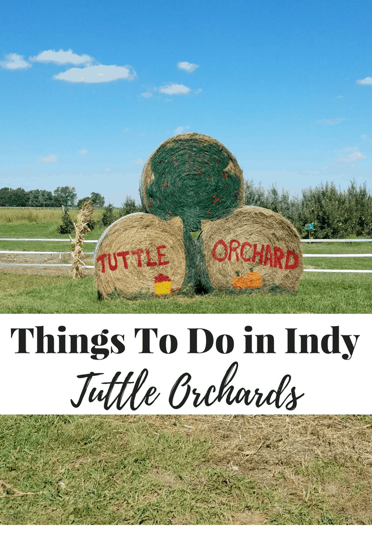 One of the best pumpkin patches and apple orchards in Indianapolis