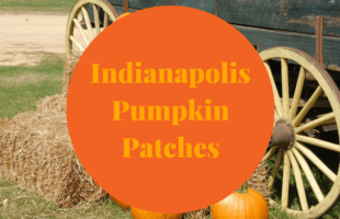 Pumpkin patches in Indianapolis and the surrounding areas