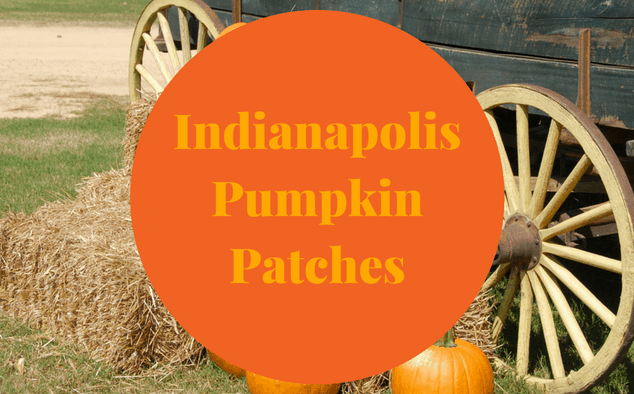 Pumpkin Patches in Indianapolis