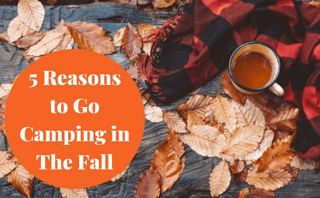 5 Reasons to Go Camping in The Fall