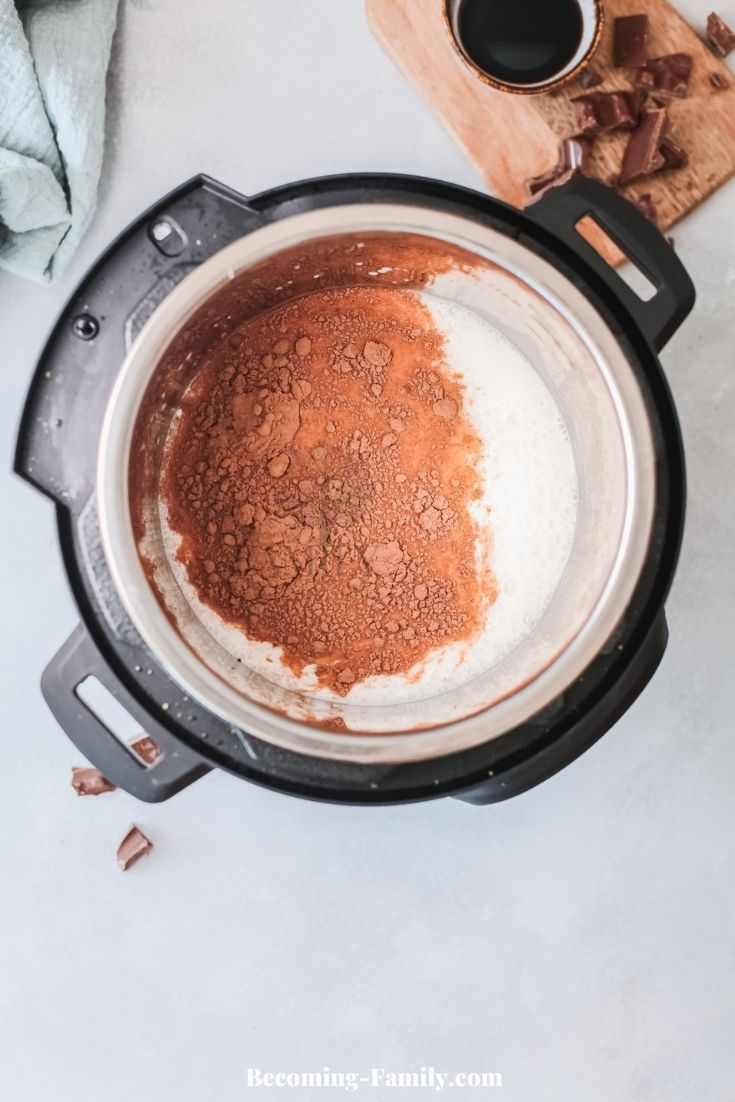 Hot chocolate in Instant Pot